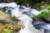 Small waterfall in jungle — Stock Photo