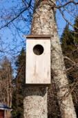 Waterfowl birdhouse on tree — Stock Photo