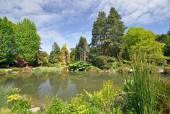 Christchurch Botanical Gardens New Zealand — Stock Photo