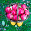 Straw basket with red apples on yellow rubber boots at the grass — Stock Photo #53955827