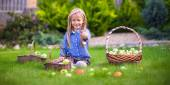 Cute little girl with autumn harvest of tomatos in baskets — Foto Stock