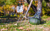 View of Halloween Pumpkins, witchs hat and rake outdoors — Foto de Stock