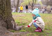 Little girl feeds a squirrel in Central park, New York, America — Стоковое фото