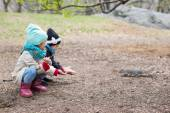 Little girls feeds a squirrel in Central park, New York, America — Stock Photo