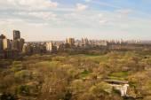 Central Park, Manhattan, New York, America — Stock Photo