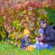 Happy family in autumn park outdoors — Stock Photo #56602229