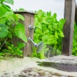 Closeup outdoor beach shower with water — Stock Photo #56603255