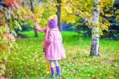 Två bedårande flickor i skogen på varma soliga höstdag — Stockfoto
