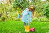 Niña con cesta de manzanas en un soleado día de otoño — Foto de Stock