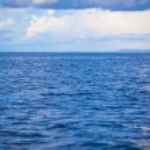 Постер, плакат: Incredibly clean turquoise water in the sea near tropical island