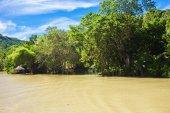 Tropical Loboc river, blue sky, Bohol Island, Philippines — Stock Photo
