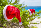 Red christmas hat on on branch background turquoise sea — 图库照片