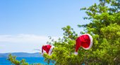Red christmas hat on on branch background turquoise sea — Stock fotografie
