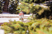 Decorative Christmas lantern on fir branch in snow winter day — ストック写真