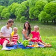 Happy parents and two kids picnicking outdoors — Stock Photo #64873987