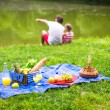 Happy family picnicking in the park — Stock Photo #64874363