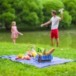 Happy family picnicking in the park — Stock Photo #64874889