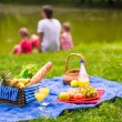 Happy family picnicking in the park — Stock Photo #64875135