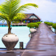 Beautiful tropical view of perfect ideal island and wooden jetty — Stock Photo #75860573