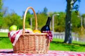 Picnic basket with fruits and wine — Stock Photo