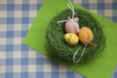 Eggs on the table — Stock Photo