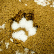 Wolf tracks on sand — Stock Photo #65581827