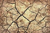The cracks on the parched earth at the bottom of the dried-up lake — Stock Photo