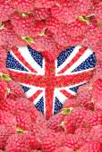 The Union Jack in the shape of a heart on a background of raspberry. — Стоковое фото