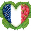Flag of France in the heart of the berries on the leaves — Stock Photo #53673031