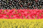 Flag of Germany from raspberries and currants — 图库照片