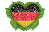 德国在叶子上浆果心中的旗帜. — 图库照片