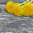 Yellow dandelion flowers on a wooden background — Stock Photo #73498929