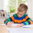 Young boy working on his class homework — Stok fotoğraf #55234719