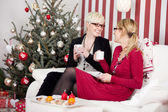 Girlfriends talking in front of christmas tree — 图库照片