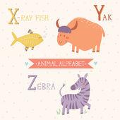 Animal Alphabet. X-ray fish, Yak, Zebra — Stock Vector