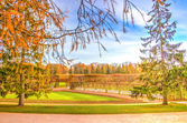 Tsarskoye Selo Parque Palácio de Catarina — Fotografia Stock