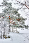 Mon repos Park Vyborg Russia — Stock Photo
