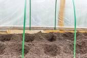 Otwór pod sadzonki z białego granulatu fertiliz mineralnych — Zdjęcie stockowe