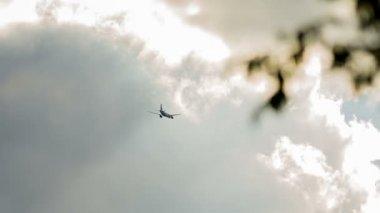 Airliner flies in sky — Stock Video