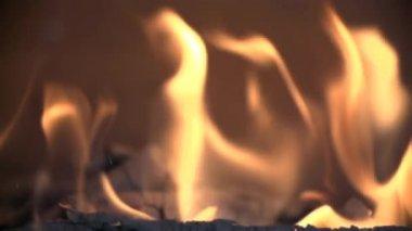 Beautiful Burning Fire — Stock Video