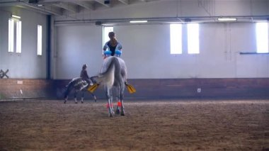 Horse Riding Masquerade Competition — Stock Video