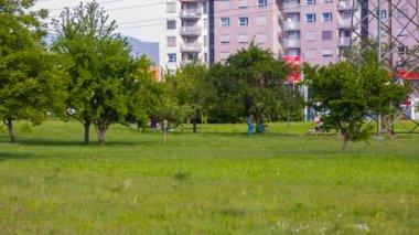 People Walking in park — Stock Video