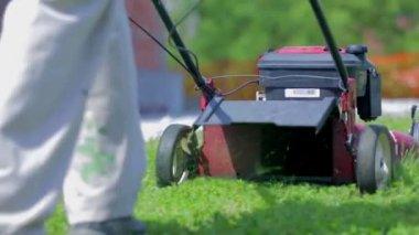 Muž řezání zelený trávník — Stock video