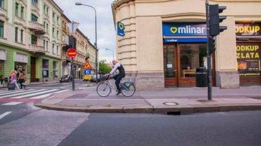 Bicyclist riding over zebra — Stockvideo