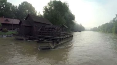 речной завод после дождя — Стоковое видео