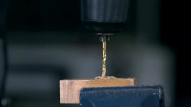 Drilling through wooden plank — Stock Video