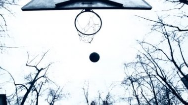 Ball Falling In Basket — Stock Video