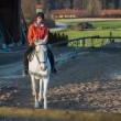 Jockey training white pedigree horse — Stock Video #68442991