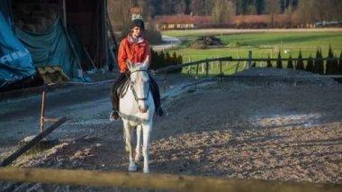 Jockey training white pedigree horse — Stock Video