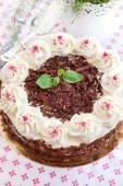 Homemade Black Forest cake — 图库照片